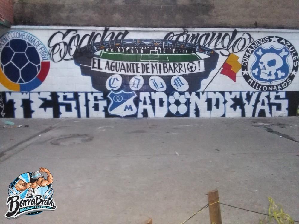 Murales De Millonarios En Bogota